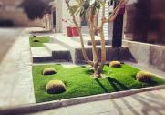 Dahia House